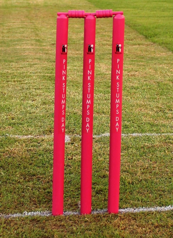 Well, it wouldn't be Pink Stumps Day without some actual pink stumps now, would it?